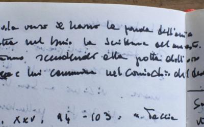 """Proiezioni di """"Libellula gentile Fabio Pusterla, il lavoro del poeta"""""""